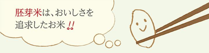 おいしい胚芽米とは、どんなお米でしょう?