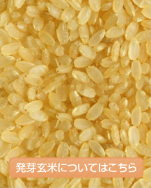 発芽玄米についてはこちら