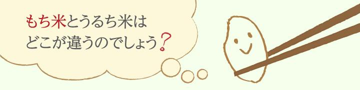 おいしいもち米とは、どんなお米でしょう?